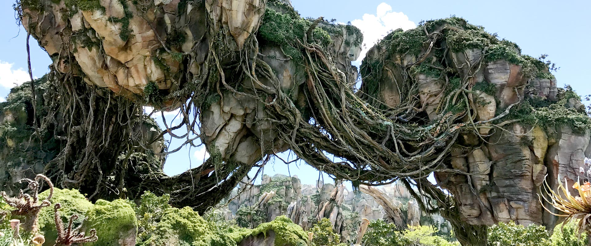 Pandora - private Disney VIP tours